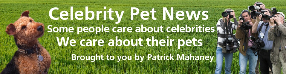 header banner for Celebrity Pet News: We Care About the Pets of Celebrities