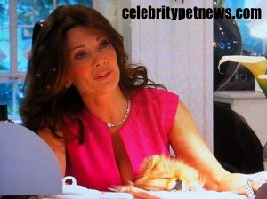 Photo of Lisa Vanderpump Giggy Sleep Nail Salon