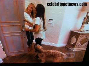 Photo of Taylor Armstrong Kyle Richards Roxy