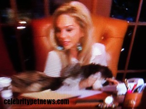 Photo of Adrienne Maloof Jackpot Visco Celebrity Pet News