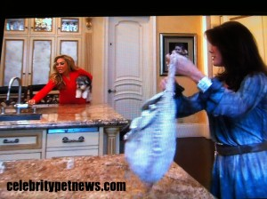 Photo of Adrienne Maloof Jackpot Lisa Vanderpump RHOBH Celebrity Pet News