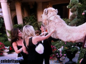 Photo of Lisa Vanderpump Pandora Jason Camel RHOBH CPN