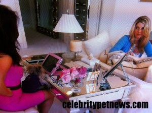 Photo of Lisa Vanderpump Giggy Pink iPad Pandora RHOBH Celebrity Pet News