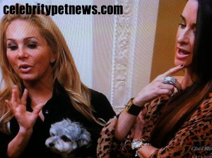 Photo of Adrienne Maloof Jackpot Kyle Richards shoes CPN RHOBH