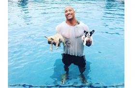 the-rock-saves-puppies.lg